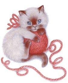 Chat et pelote de laine